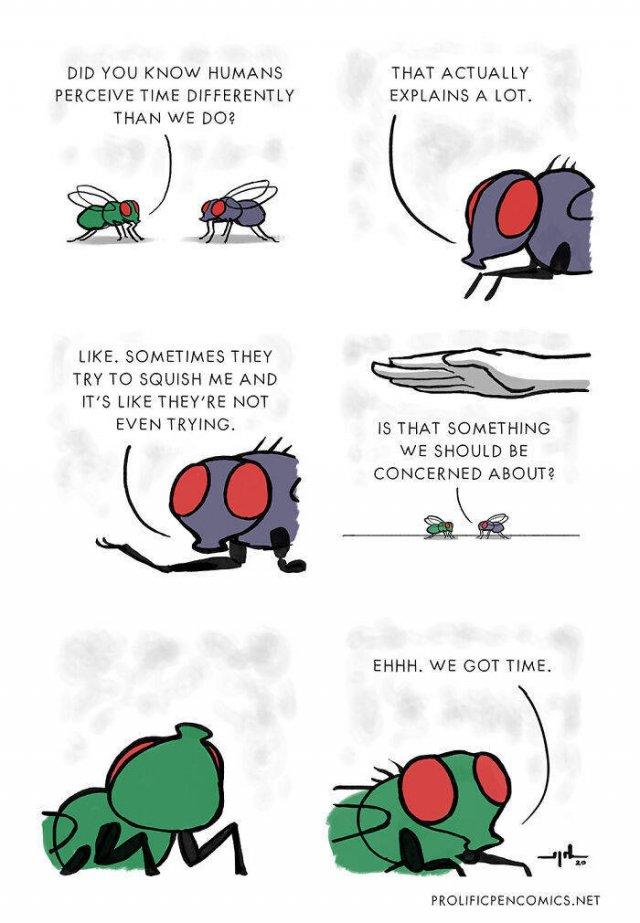 Funny Comics (47 pics)