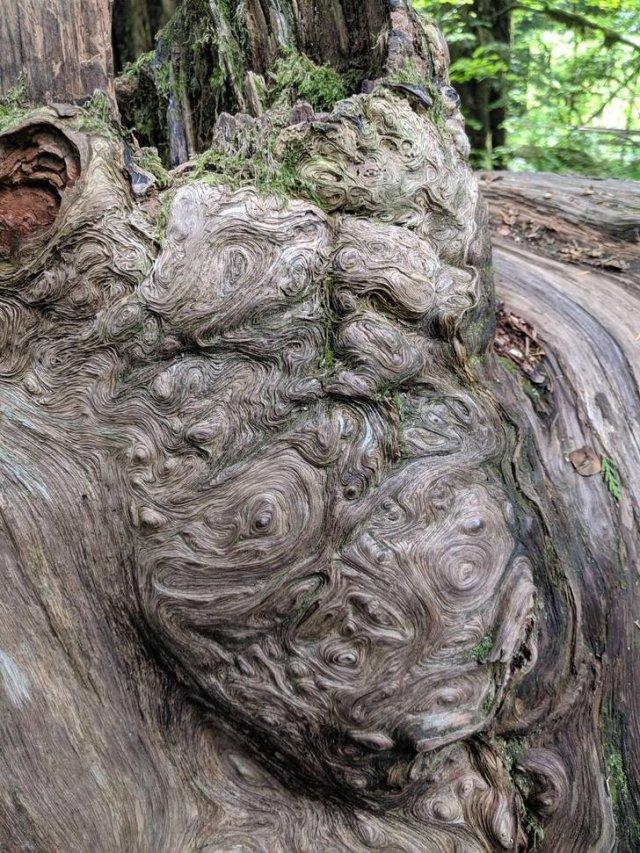 Beautiful Nature (20 pics)