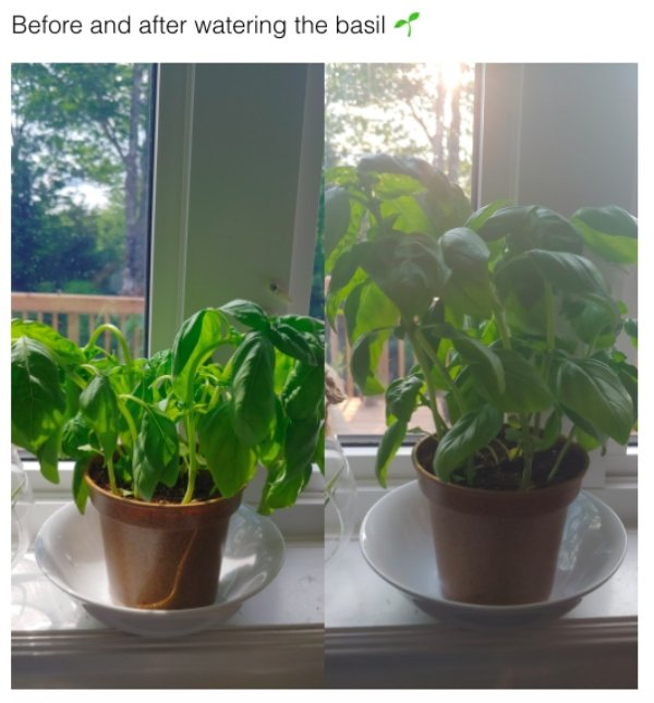 Before And After Photos (28 pics)