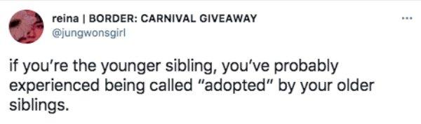 Sibling Memes And Tweets (29 pics)