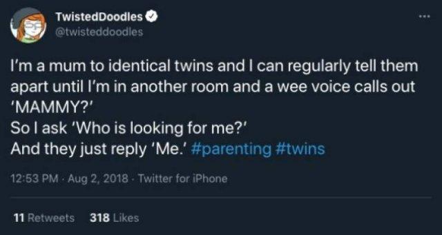 Twins Tweets (26 pics)