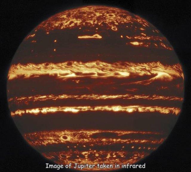 كوكتيل همبريب 2 (84 pics)