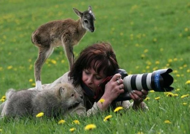 No Words Needed For These Pictures (30 pics)