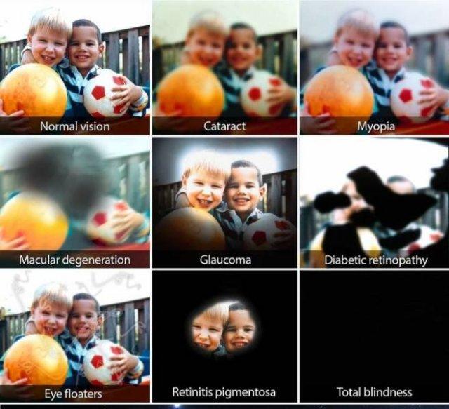 Amazing Pictures (36 pics)