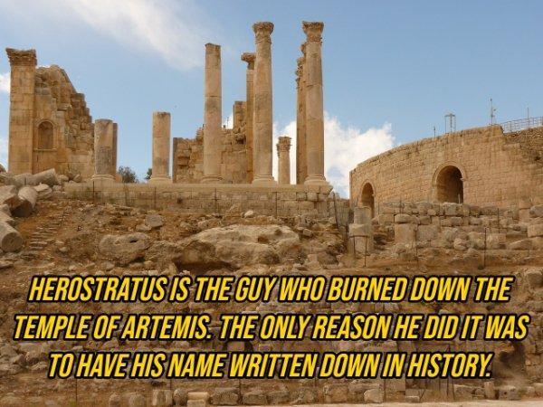 History Facts (20 pics)