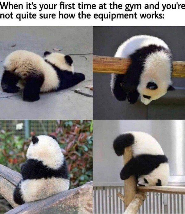 So True And So Sad (30 pics)