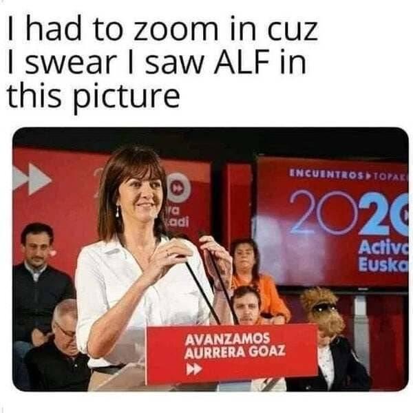 Look Twice (30 pics)