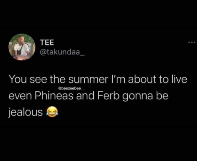Summer Memes (25 pics)