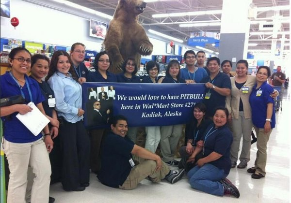 Pitbull's Walmart Journey In Kodiak, Alaska (19 pics)
