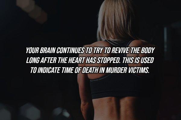 Human Body Facts (25 pics)