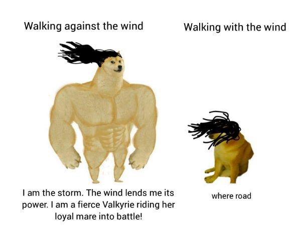 Hilarious Memes (21 pics)