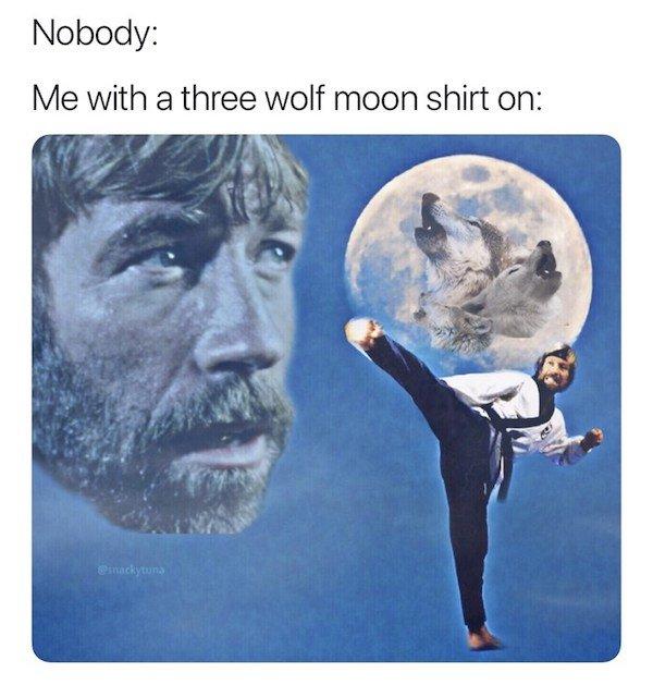 Action Hero Memes (35 pics)