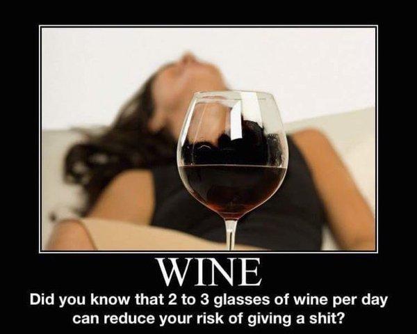 Wine Memes (29 pics)