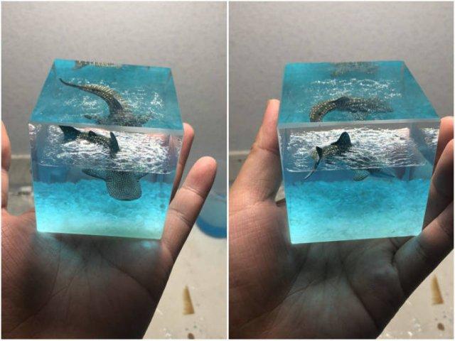 Amazing DIY Projects (35 pics)