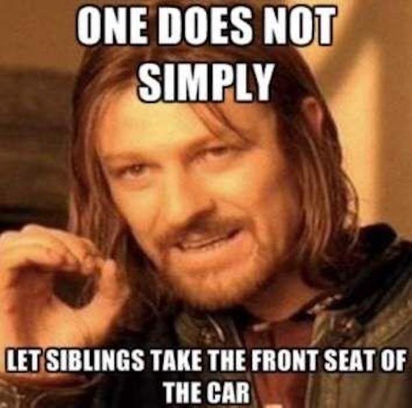 Sibling Memes (45 pics)