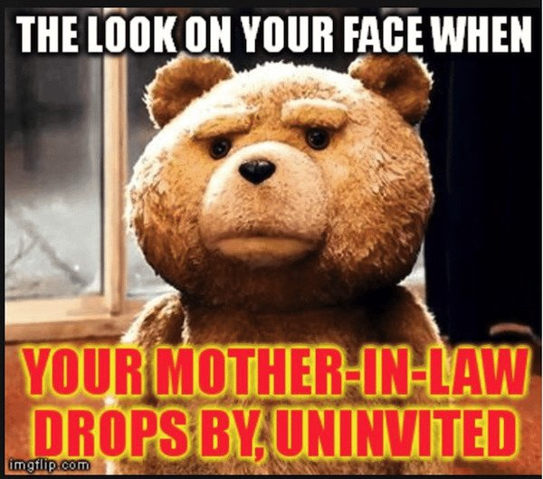 In-Laws Memes And Tweets (35 pics)