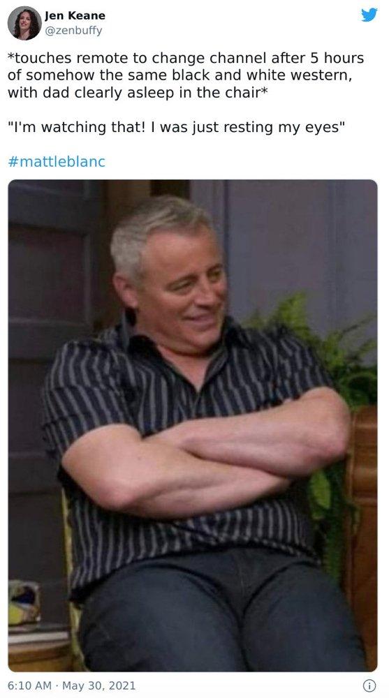 Matt LeBlanc Humor (35 pics)