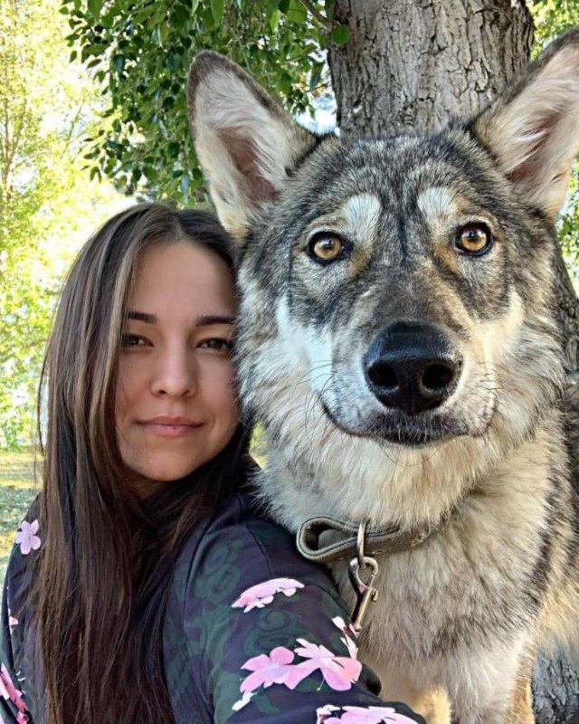 Woman And Wolf Become Inseparable Friends (19 pics)