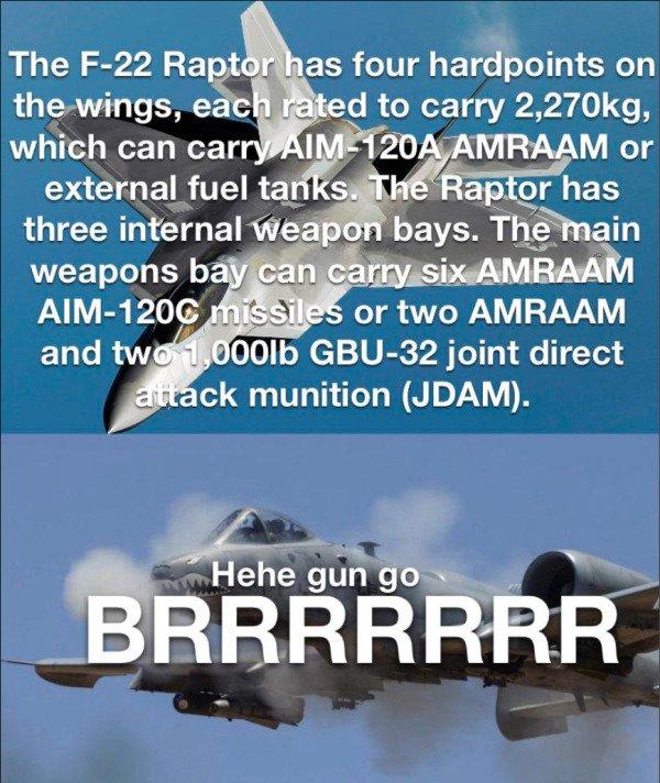 Warthog Memes (47 pics)