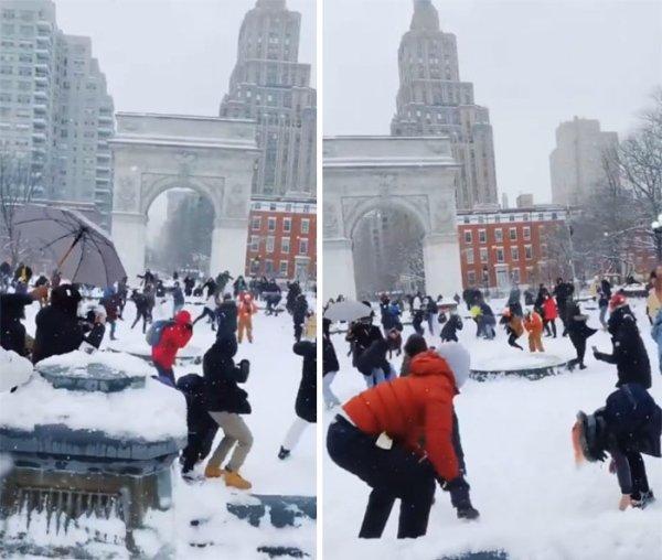 New York Life (29 pics)