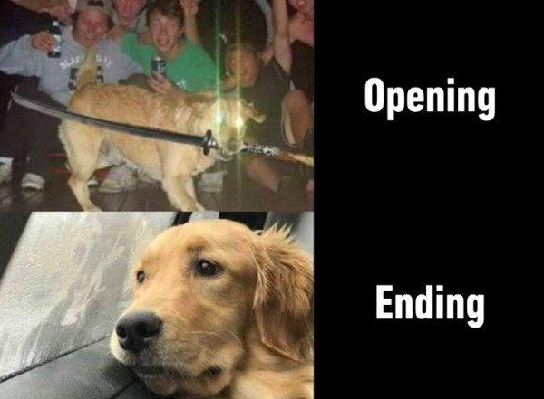 So True (22 pics)