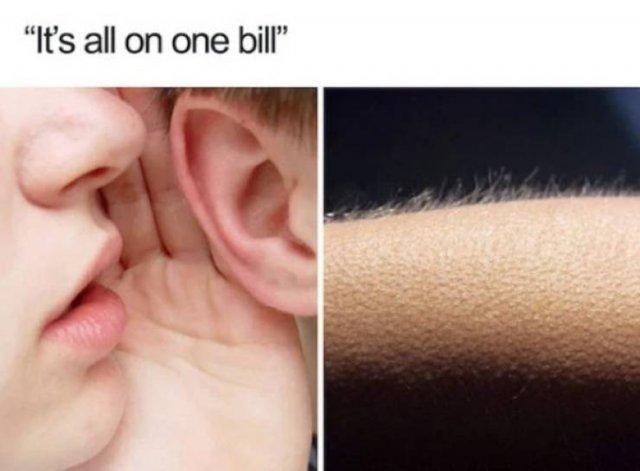 Server Memes (28 pics)