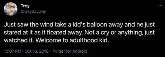 Adulthood Tweets (31 pics)