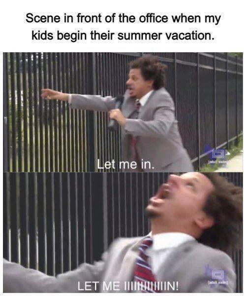 Summer Memes (30 pics)