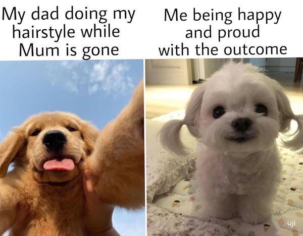 Wholesome Memes (25 pics)