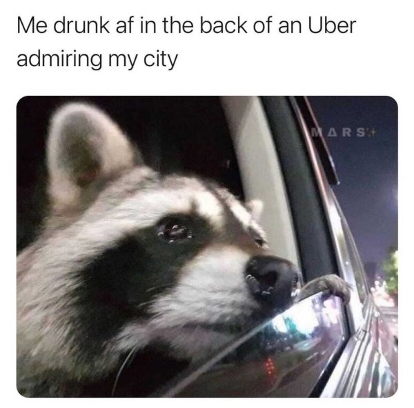 Alcohol Memes And Pictures (23 pics)