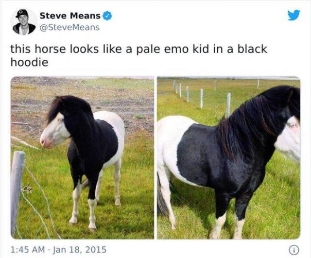 Internet Humor (42 pics)