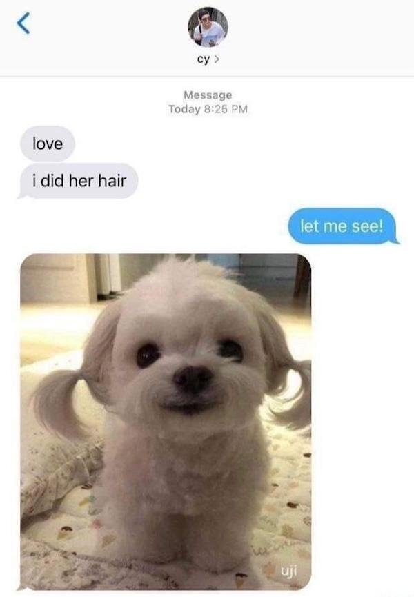 Wholesome Images (29 pics)