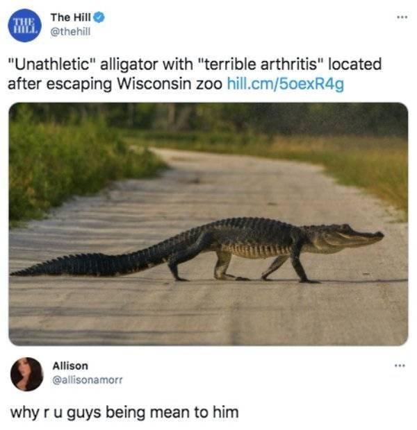 Internet Humor (38 pics)