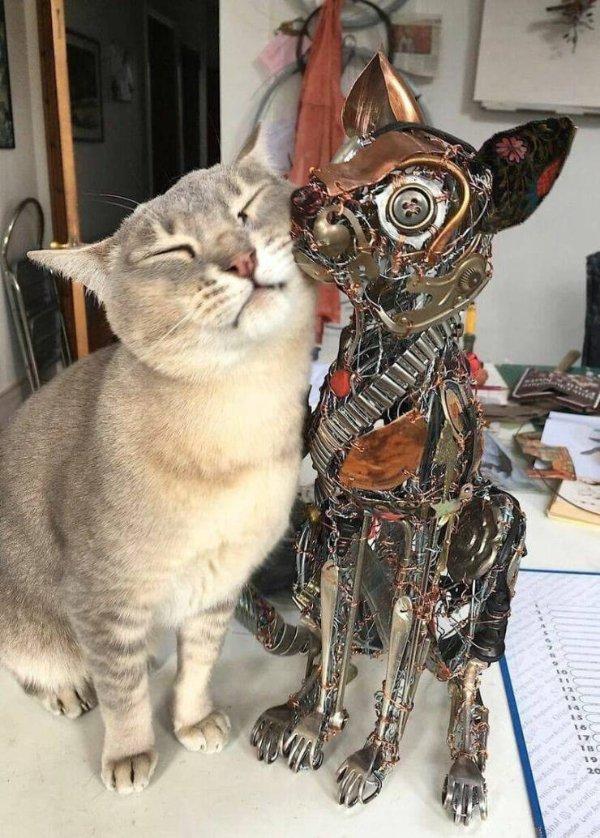 Cat Humor (27 pics)
