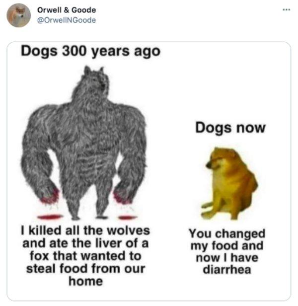 Internet Humor (24 pics)