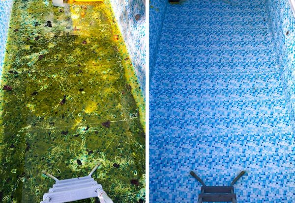 Deep Cleaning Satisfaction (25 pics)