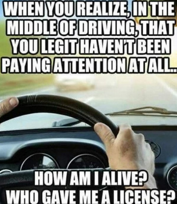 Memes About Driving (36 pics)