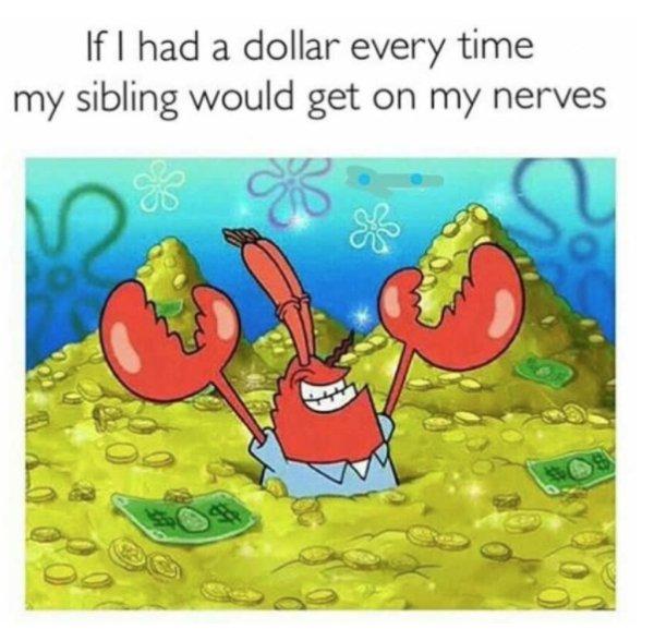 Siblings Humor (29 pics)