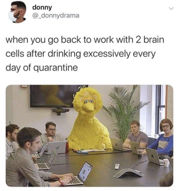 Quarantine Humor (27 pics)