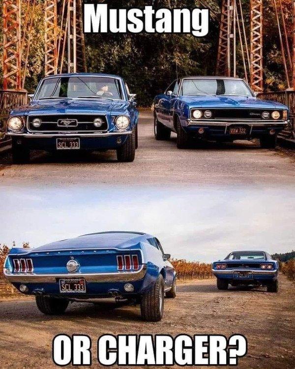 Beautiful Cars (50 pics)