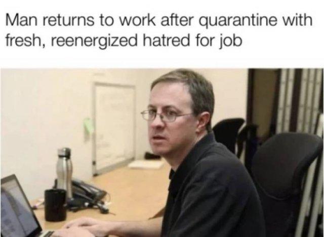 Quarantine Humor (25 pics)