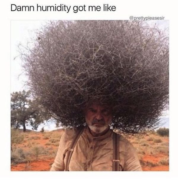 Summer Memes (26 pics)