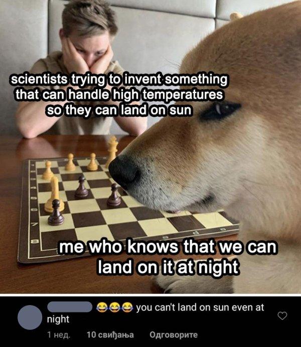 Where Is Logic? (28 pics)
