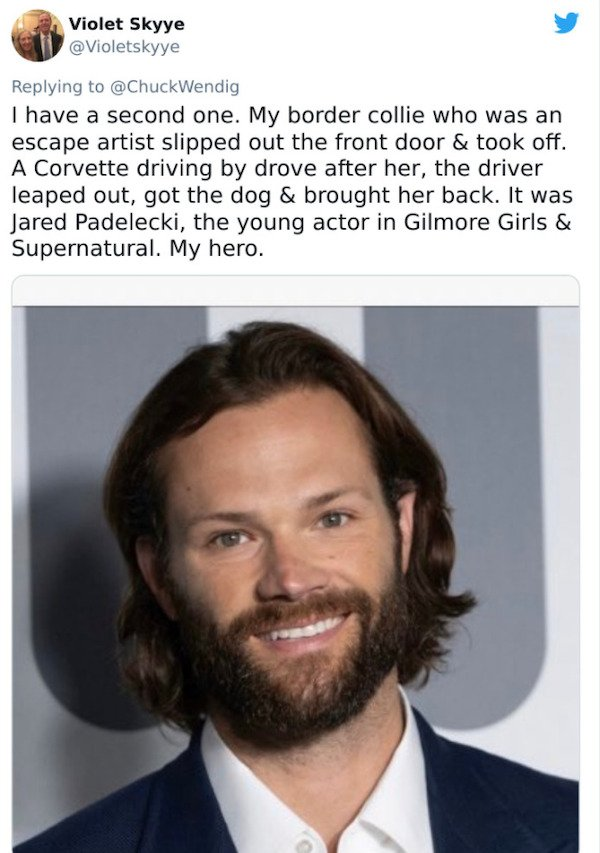 Unusual Celebrity Encounters (27 pics)