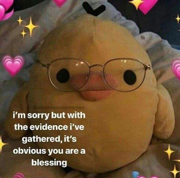 Flirtatious Memes (24 pics)
