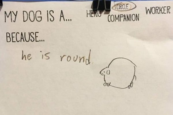 Funny Homework Answers (34 pics)