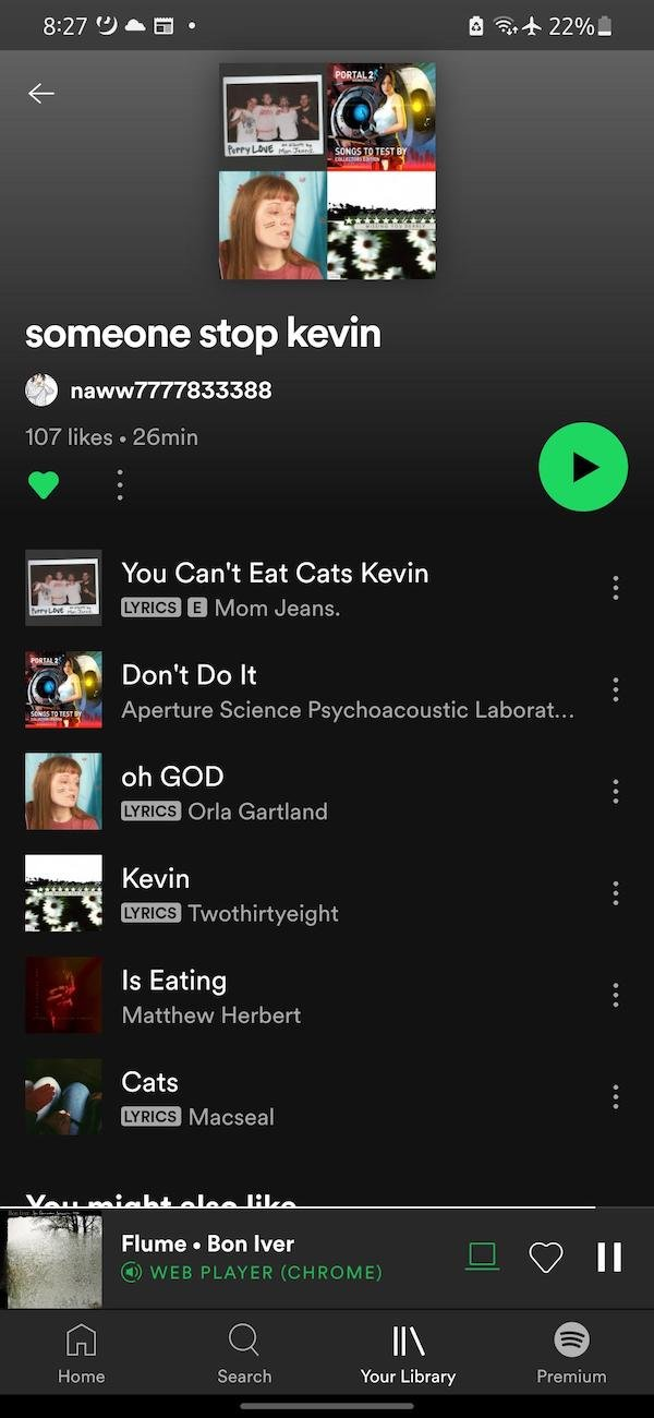 Spotify Playlists For Different Occasions (33 pics)
