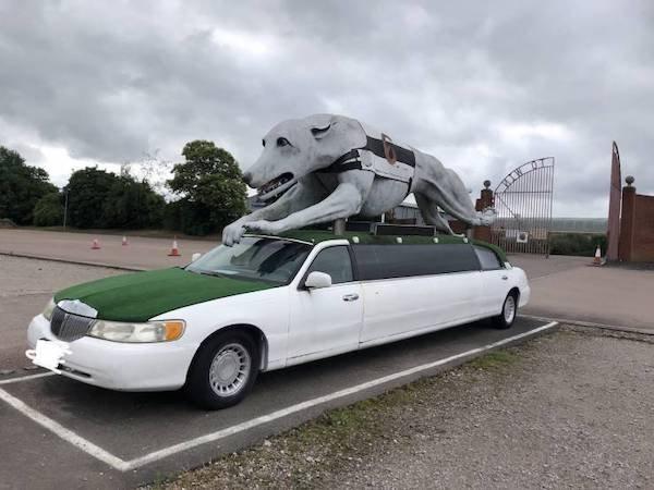 Weird Transport (53 pics)