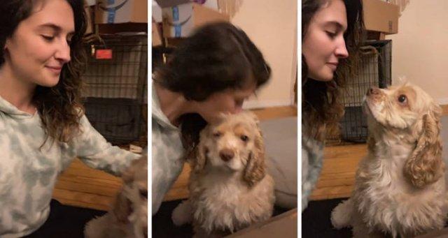 Unexpected Kisses (45 pics)