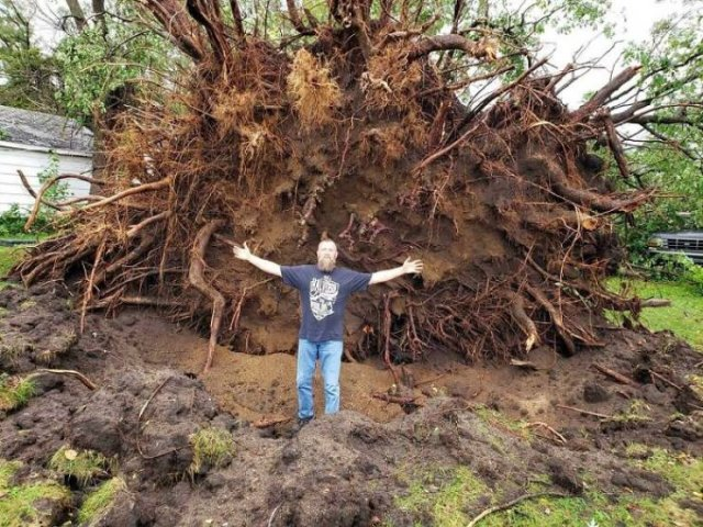The Power Of Nature (49 pics)